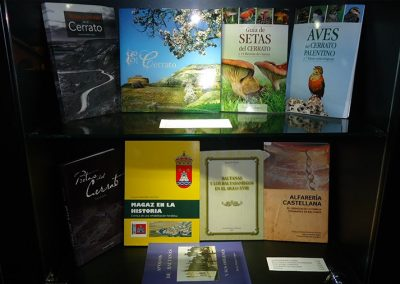 tienda-museo-cerrato-libros2